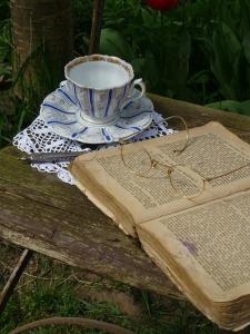book-goggles-348090_640